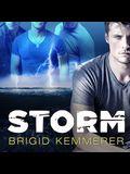 Storm Lib/E