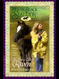 A Horse Called Raven (Young Black Stallion #2)