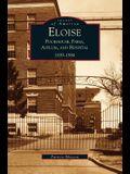Eloise: : Poorhouse, Farm, Asylum and Hospital 1839-1984