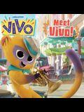 Meet Vivo!