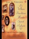 Where Peachtree Meets Sweet Auburn: A Saga of Race and Family