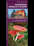 Dangerous Animals & Plants: A Folding Pocket Guide to Dangerous North American Species