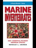 Marine Invertebrates: 500+ Essential-To-Know Aquarium Species