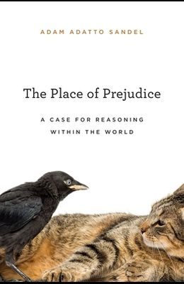 The Place of Prejudice: A Case for Reasoning Within the World