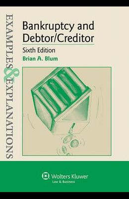 Examples & Explanations for Bankruptcy and Debtor Creditor