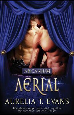 Arcanium: Aerial