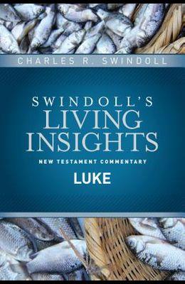 Insights on Luke
