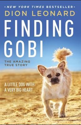 Finding Gobi: A Little Dog with a Very Big Heart