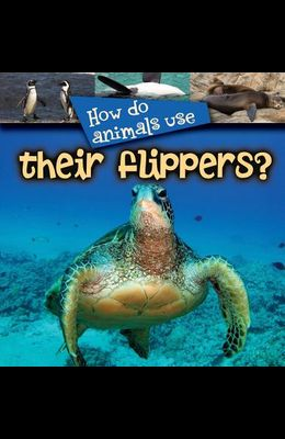 How Do Animals Use... Their Flippers?