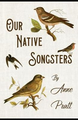 Our Native Songsters