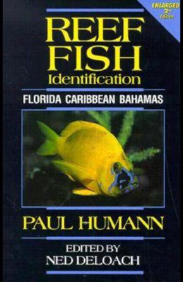 Reef Fish Identification: Florida, Caribbean and Bahamas