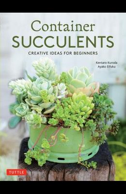 Container Succulents: Creative Ideas for Beginners