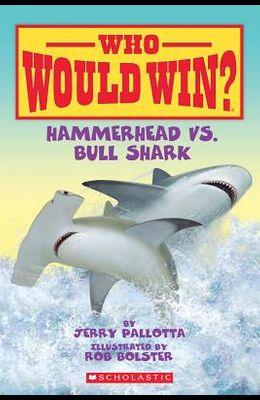 Hammerhead vs. Bull Shark