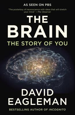 The Brain: The Story of You
