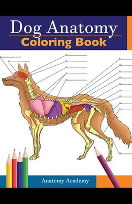 Dog Anatomy Coloring Book: Incredibly Detailed Self-Test Canine Anatomy Color workbook Perfect Gift for Veterinary Students, Dog Lovers & Adults