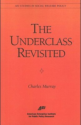 The Underclass Revisited