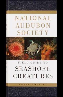National Audubon Society Field Guide to Seashore Creatures: North America