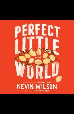 Perfect Little World Lib/E
