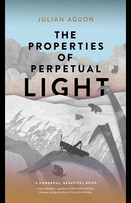 The Properties of Perpetual Light