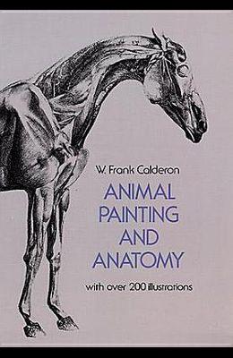 Animal Painting and Anatomy