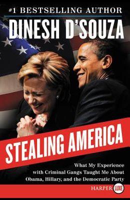 Stealing America LP