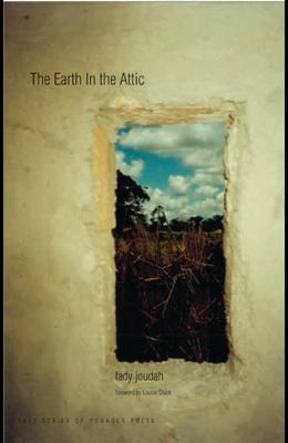 Earth in the Attic