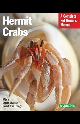 Hermit Crabs: Everything about Purchase, Care, and Nutrition