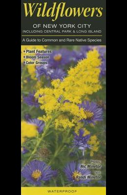 Wildflowers of New York City, Incl. Central Park & Long Island: A Guide to Common & Rare Native Species
