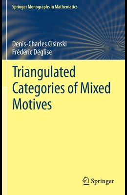 Triangulated Categories of Mixed Motives