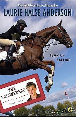 Fear of Falling (Vet Volunteers)