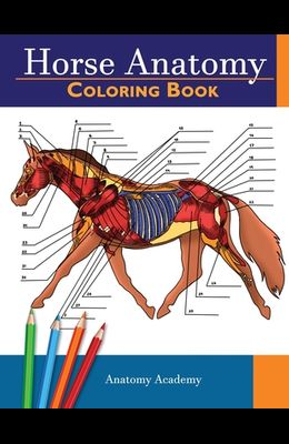 Horse Anatomy Coloring Book: Incredibly Detailed Self-Test Equine Anatomy Color workbook - Perfect Gift for Veterinary Students, Horse Lovers & Adu