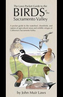 The Laws Pocket Guide to the Birds of the Sacramento Valley: Birds of the Sacramento Valley
