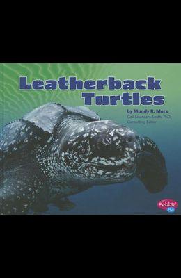 Leatherback Turtles