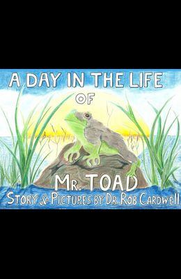 A Day in the Life of Mr. Toad
