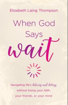 When God Says wait: Navigating Life's Detours and Delays Without Losing Your Faith, Your Friends, or Your Mind