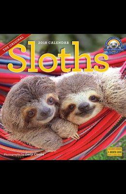 Sloths Wall Calendar 2018