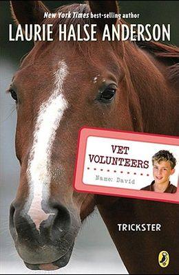 Trickster #3 (Vet Volunteers)