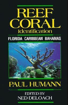 Reef Coral Identification: Florida, Caribbean, Bahamas