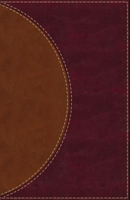 Amplified Reading Bible, Imitation Leather, Brown: A Paragraph-Style Amplified Bible for a Smoother Reading Experience