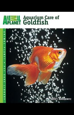 Aquarium Care of Goldfish