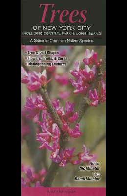 Trees of New York City, Incl. Central Park & Long Island: A Guide to Common Native Species