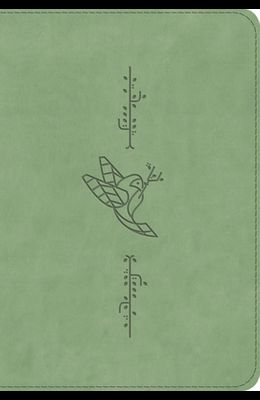 ESV Kid's Bible, Compact (Trutone, Bird of the Air)
