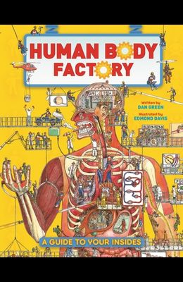The Human Body Factory: A Guide to Your Insides