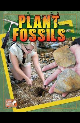 Plant Fossils