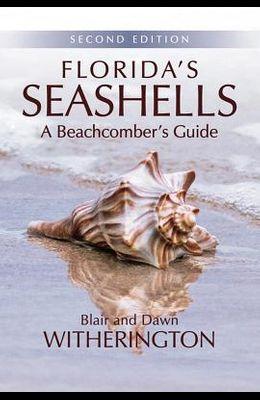 Florida's Seashells: A Beachcomber's Guide