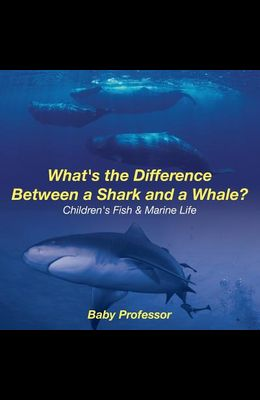 What's the Difference Between a Shark and a Whale? - Children's Fish & Marine Life