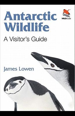 Antarctic Wildlife: A Visitor's Guide