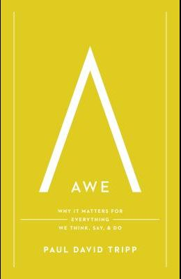 Awe: Why It Matters for Everything We Think, Say, and Do
