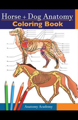 Horse + Dog Anatomy Coloring Book: 2-in-1 Compilation Incredibly Detailed Self-Test Equine & Canine Anatomy Color workbook Perfect Gift for Veterinary