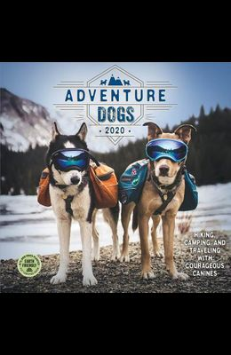 Adventure Dogs 2020 Wall Calendar: Hiking, Camping, and Traveling with Courageous Canines
